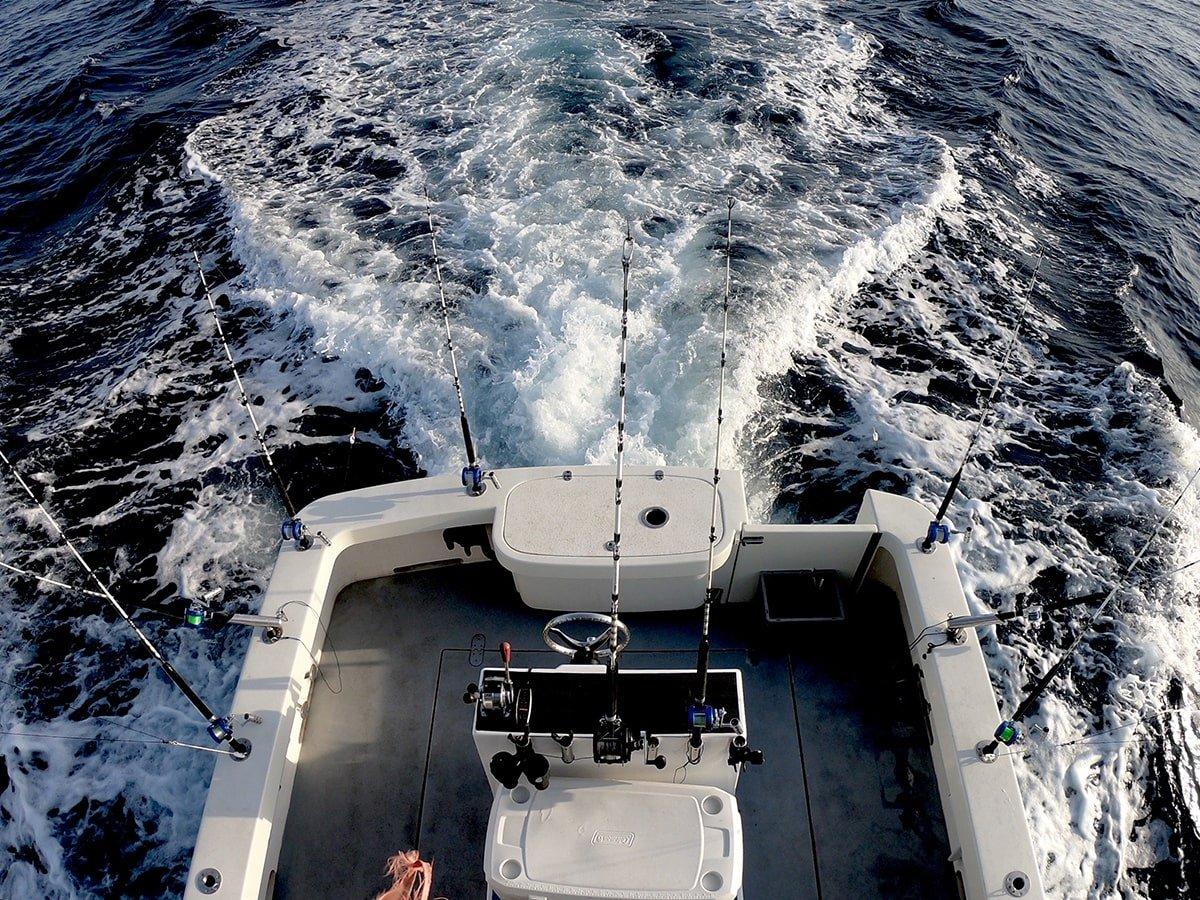 Fishing Tour Sorrento Trips