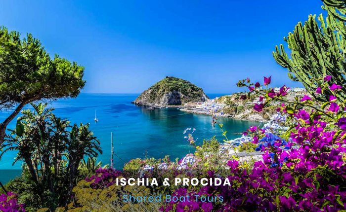 Ischia e Procida Boat Tour